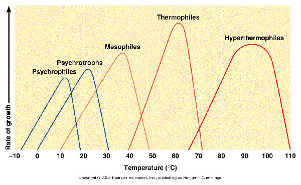Temperature ranges of organisms (Tortora, 2007)
